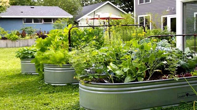 Сад и огород своими руками ютуб 40